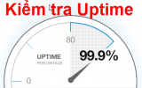 Kiểm tra uptime website
