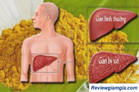 Tinh bột nghệ giúp ngăn ngừa bệnh gan