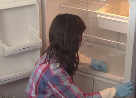 Dọn tủ lạnh