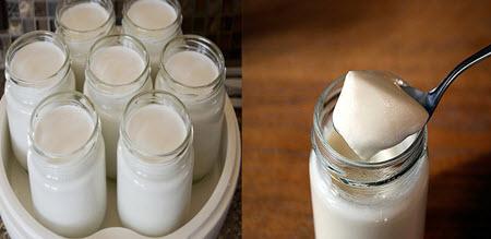 ủ sữa chua bằng máy
