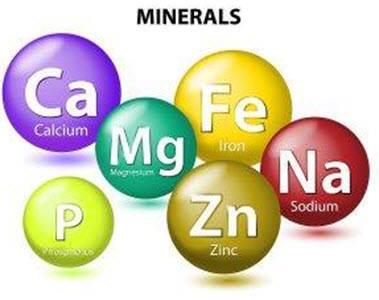 Năng lượng trong hạt chia