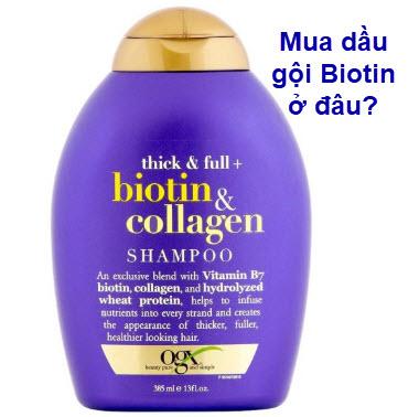 Mua dầu gội Biotin ở đâu