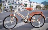 giá xe đạp asama trẻ em