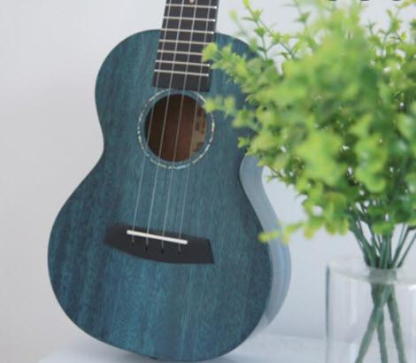 đàn ukulele tenor giá bao nhiêu