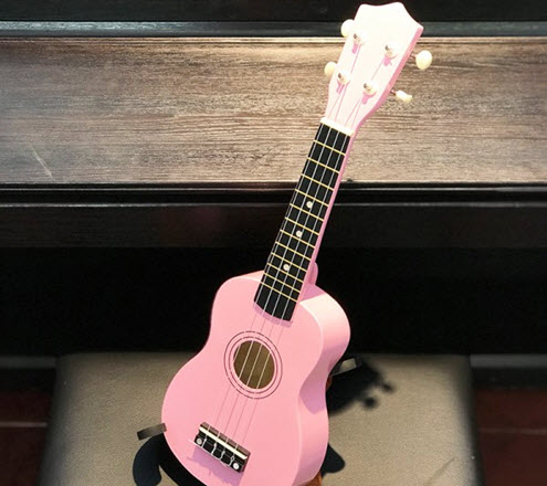 các hãng đàn ukulele nổi tiếng
