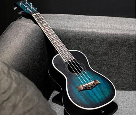 giá ukulele concert