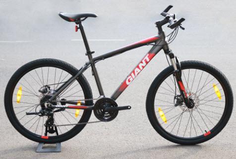 xe đạp giant của nước nào